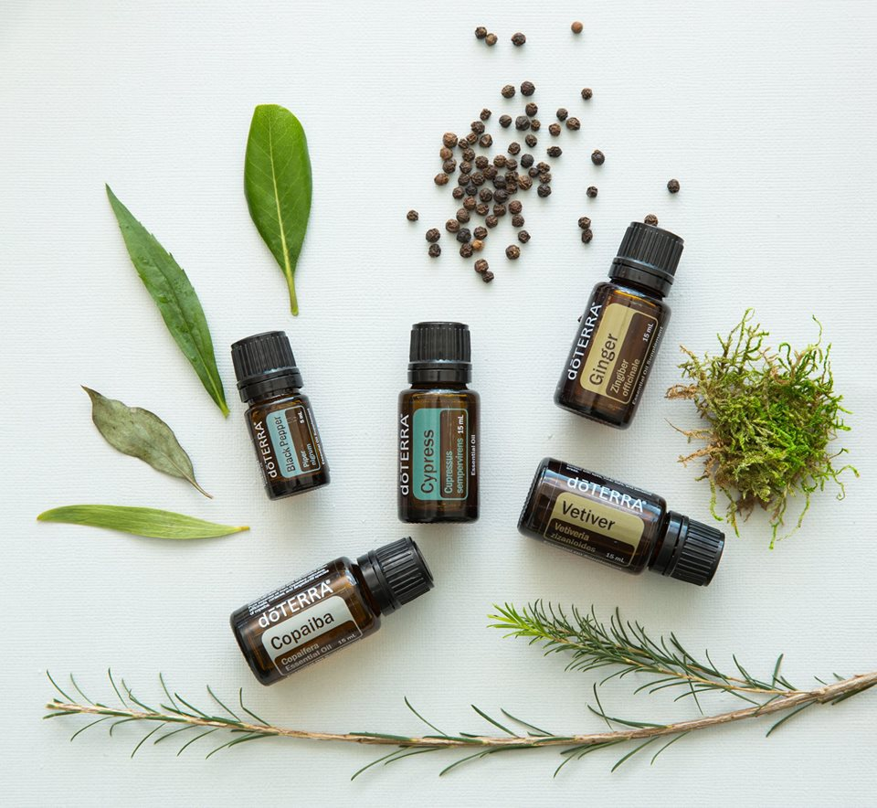 Vetiver and other earthy scents